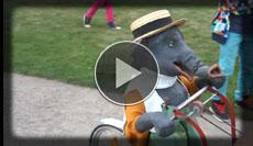 Der kleine Elefant spricht mit allen die sich ihm in den Weg stellen
