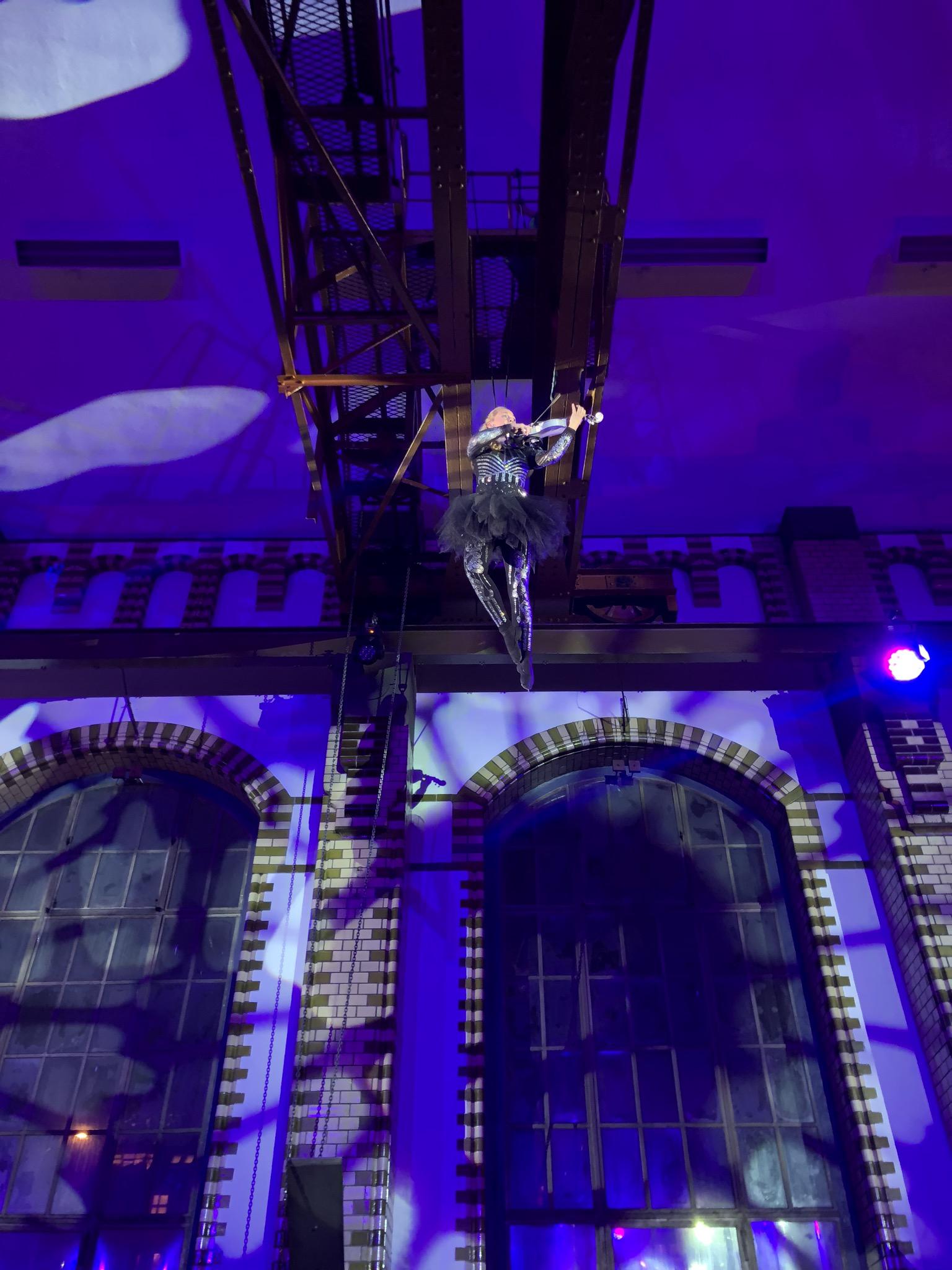 vertical -violin-show