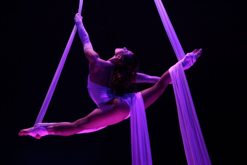 Aerialist-silks-Germany-white-tissue