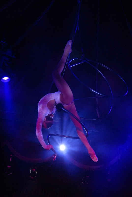 aerialist_classic_style_ring
