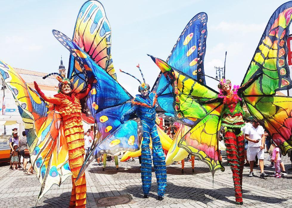 Colorful-butterflies-on-stilts
